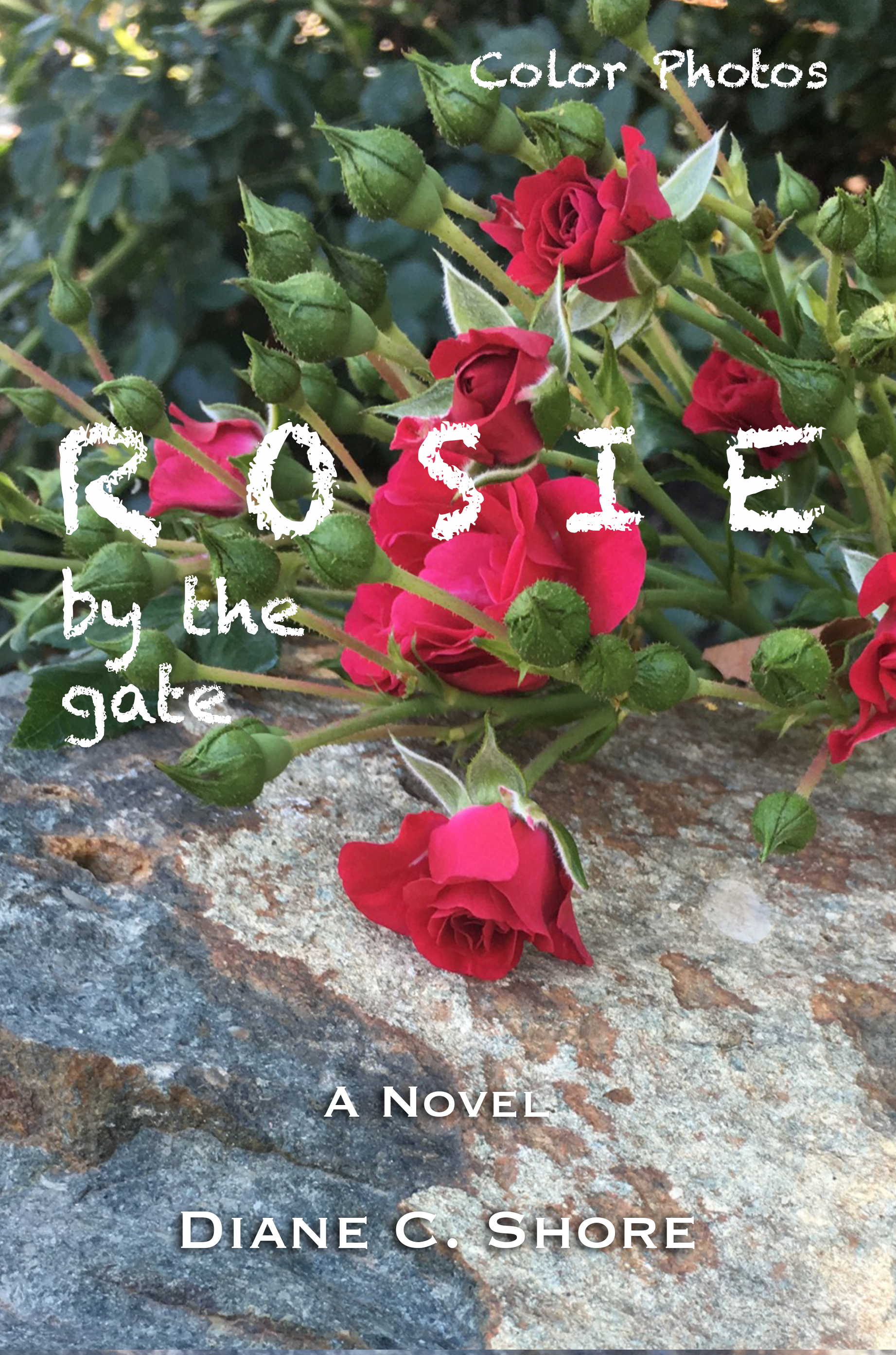 Rosie by the gate